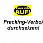 fracking_verbot_durchsetzen_kurz31_640